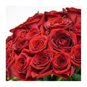 101 Luxury Red Roses