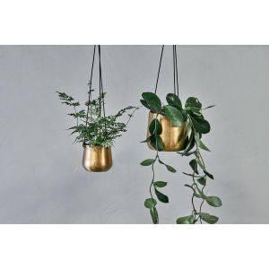 Atsu Brass Hanging Planter