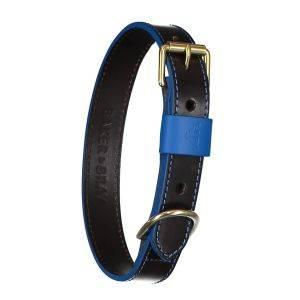 Pimlico Dog Collar Black/Blue