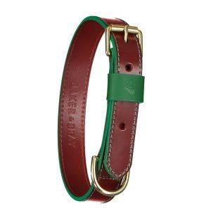 Pimlico Dog Collar Tan/Green