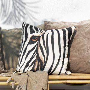 Zebra Graphic Velvet Cushion